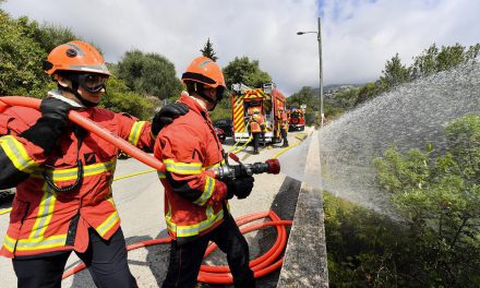 Monaco's firefighters always ready to help fight forest fires