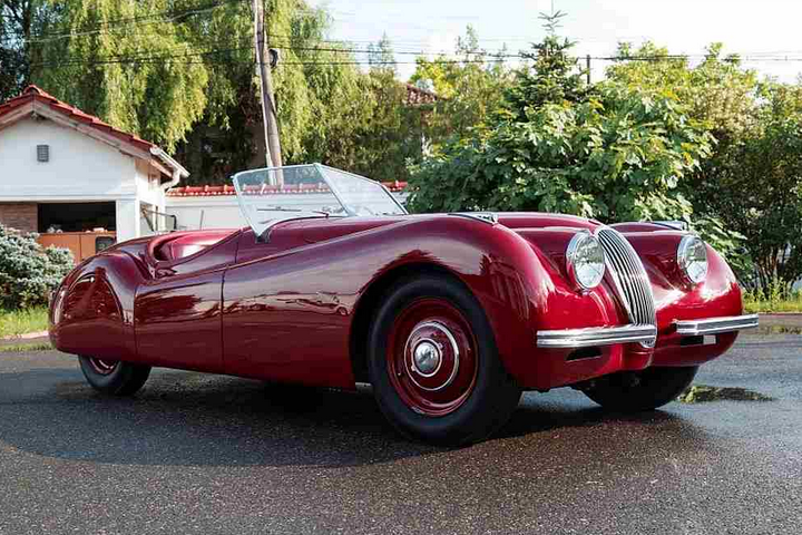 Glorious Jaguar to be auctioned this month