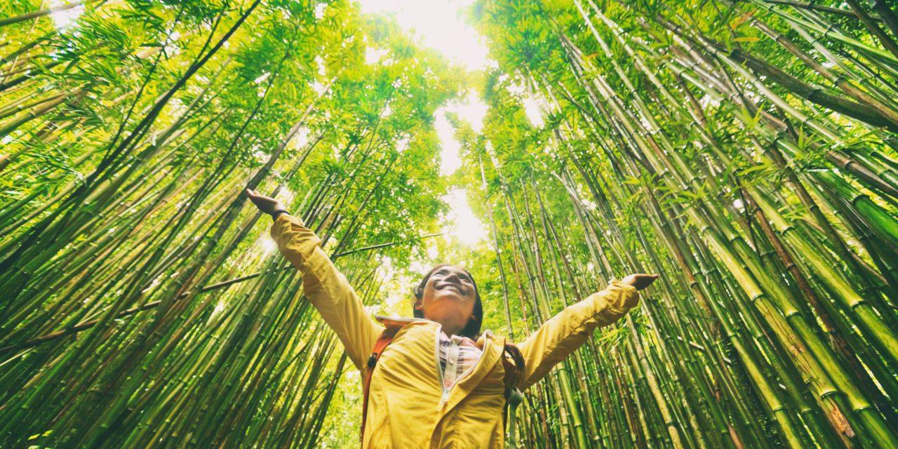 Global Environment Media (GEM) Announces Digital Media Network Dedicated to Positive Environmental Solutions