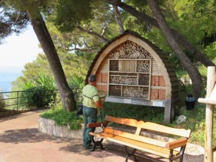 Monaco plays its part in bee protection